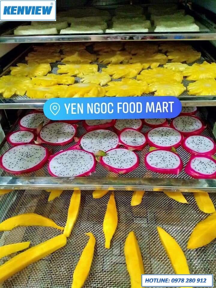 Cung cấp máy sấy trái cây tại Nam Định.