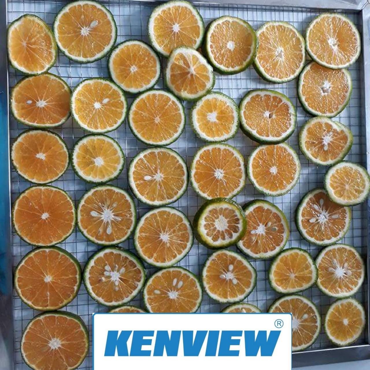 Cam sấy khô bằng máy sấy thực phẩm kenview