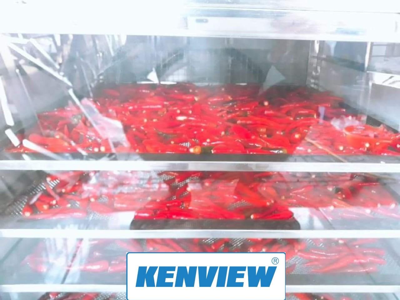 Sấy ớt khô bằng máy sấy thực phẩm kenview