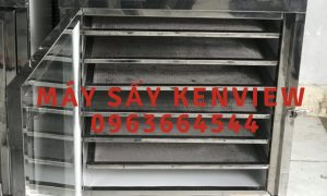 Kenview cung cấp máy sấy cá cơm ở Phan Rang – Máy sấy hải sản