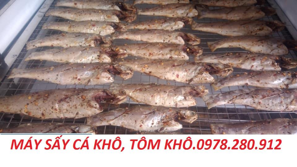 Máy sấy hải sản chuyên nghiệp Kenview, sấy tôm khô, cá khô.LH:0978.280.912