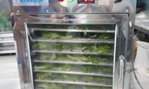 Kenview cung cấp máy sấy nấm ở Thủ Đức – Máy sấy thực phẩm đa năng