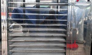 Kenview cung cấp máy sấy cá chạch ở Quảng Ninh – Máy sấy hải sản khô