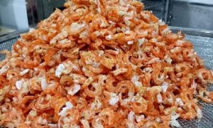 Kenview cung cấp máy sấy tôm Gò Vấp – Máy sấy thực phẩm giá rẻ