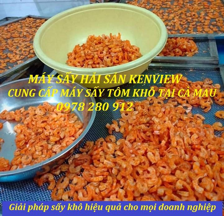 Cung cấp máy sấy hải sản, máy sấy tôm khô cho khách tại Cà Mau. 0978 280 912