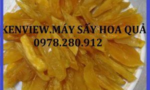 Cung cấp máy sấy trái cây công nghiệp tại Đồng Tháp. 0978280912