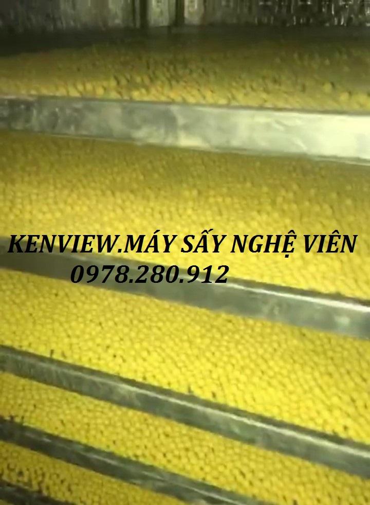 Máy sấy tinh bột nghệ giá rẻ, máy sấy nghệ viên KENVIEW.0978.280.912