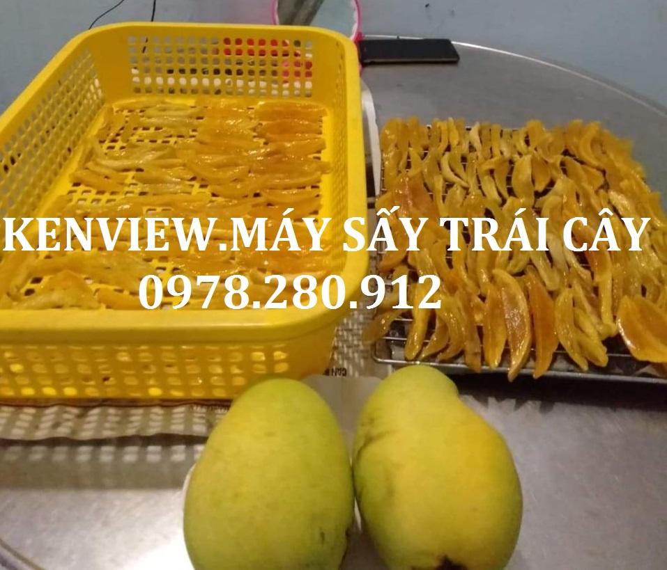 Máy sấy trái cây Kenview. Sấy xoài