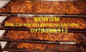 Cung cấp máy sấy khô bò, sấy trái cây tại Quảng yên, Quảng Ninh. 0978.280.912