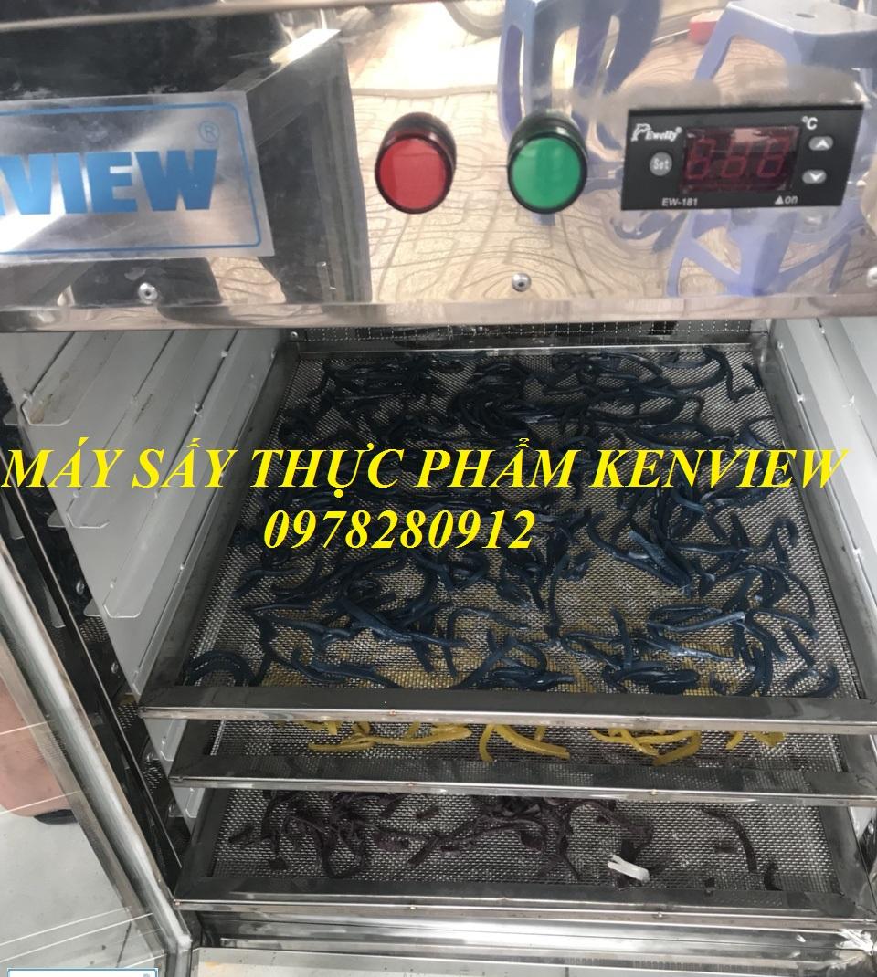 Cung cấp máy sấy mứt dừa tại Bến Tre. 0978280912
