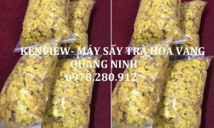 Kenview cung cấp máy sấy dược liệu, sấy hoa trà vàng tại Quảng Ninh.
