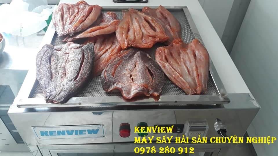Máy sấy hải sản Kenview cung cấp sang Cambodia sấy cá khô.
