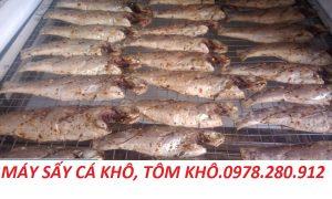 Máy sấy cá khô mini – Máy sấy kenview