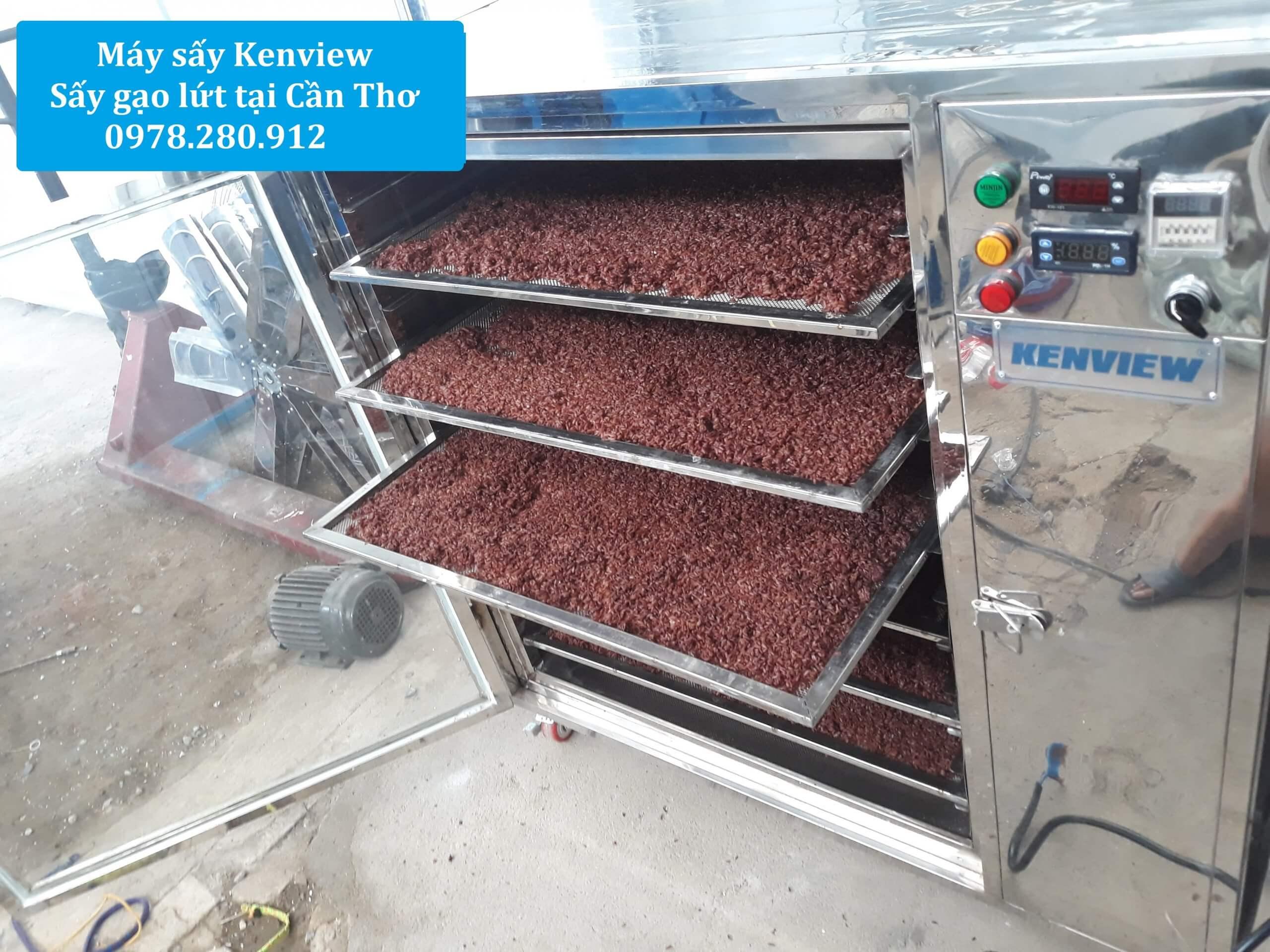 Máy sấy Kenview, máy sấy gạo lứt Tại Cần Thơ. 0978.280.912