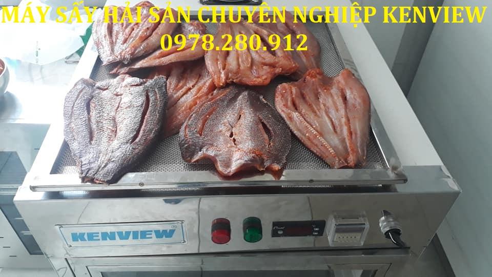 Máy sấy hải sản chuyên nghiệp-Cung cấp sấy cá khô tại An Giang. 0978.280.912