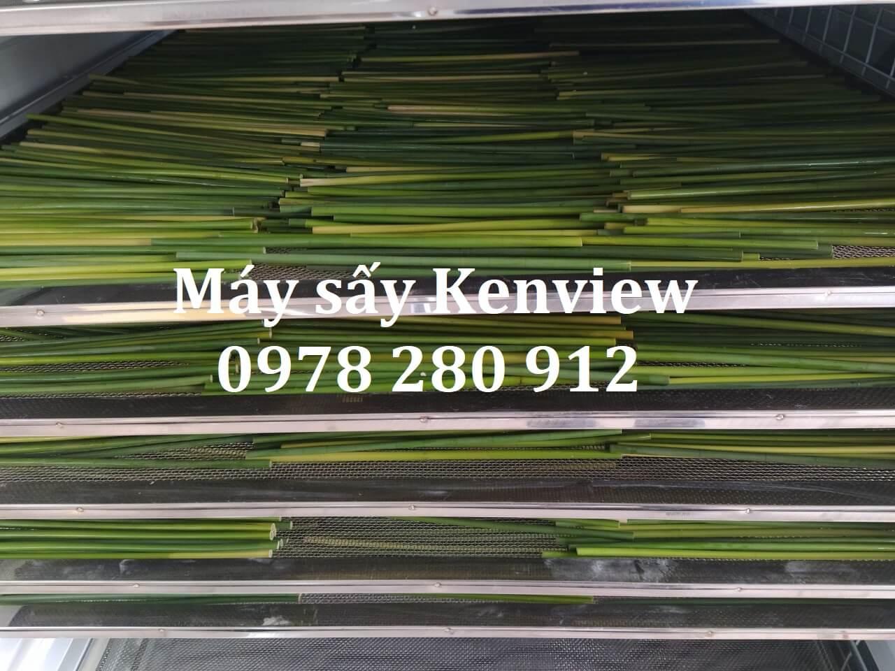 Máy sấy Kenview cung cấp Máy sấy Ống hút cỏ bàng tại TP.HCM .0978280912