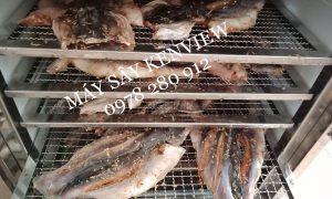 Kenview cung cấp máy sấy hải sản, sấy tôm ,sấy cá tại Đồng Tháp. 0978 280 912
