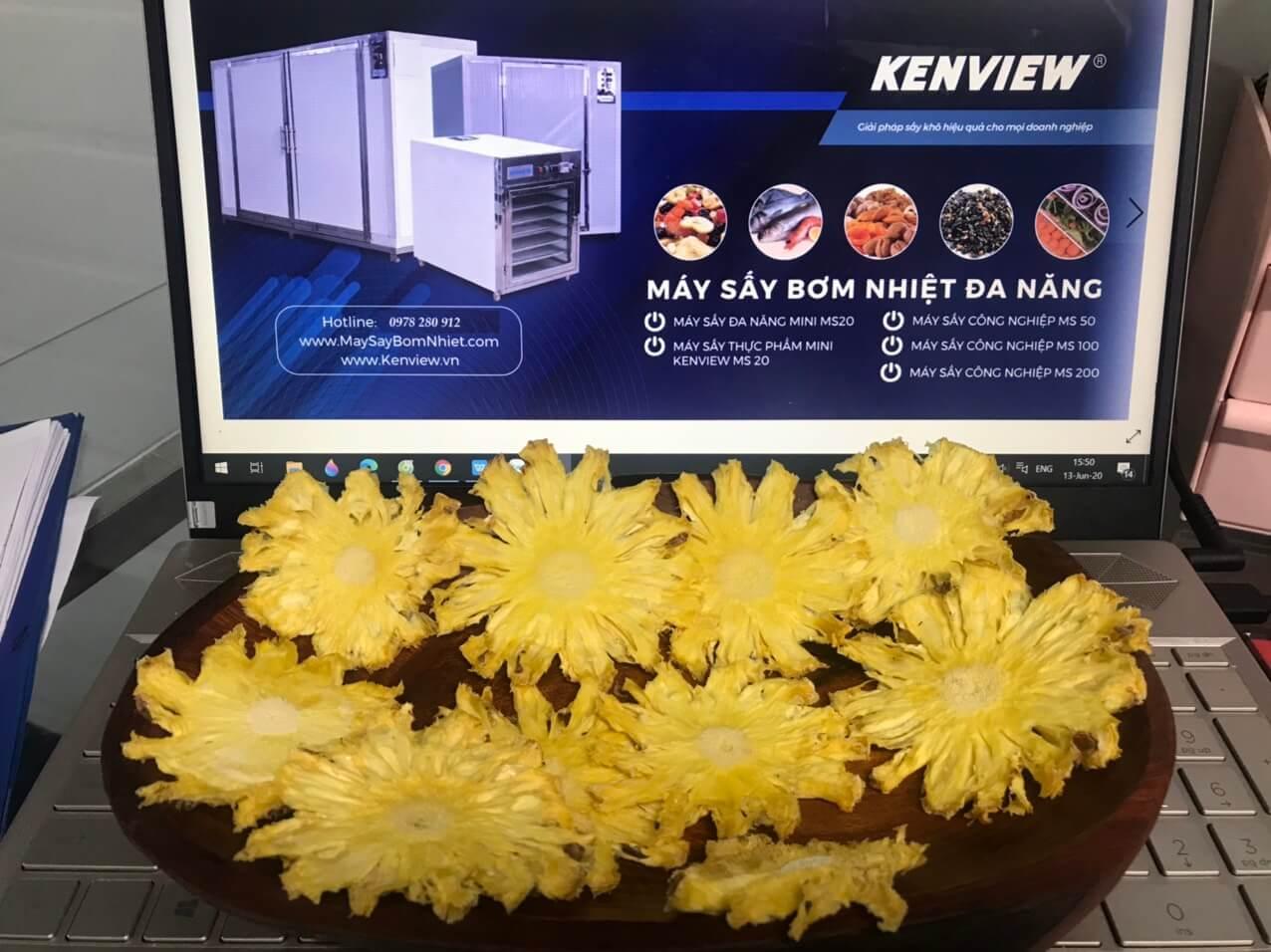 Máy sấy hoa quả công nghiệp Kenview,Máy sấy hoa quả làm detox tại Phú Yên.