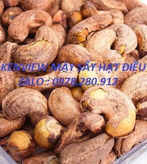 Máy sấy nông sản Kenview- Máy sấy hạt điều.0978.280.912