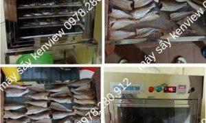 Máy sấy hải sản Kenview cung cấp cho khách sấy cá, tôm khô tại Sóc Trăng.0978.280.912