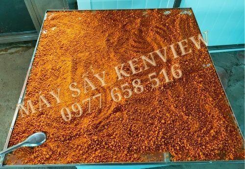 Máy sấy muối ớt Tây Ninh, thời gian sấy trong 4h.