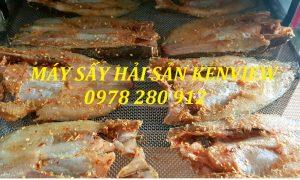 Kenview cung cấp máy sấy cá khô tại Quảng Ninh. 0978 280 912