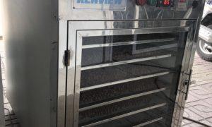 Kenview cung cấp máy sấy chuối hột tại Tuyên Quang 0978280912