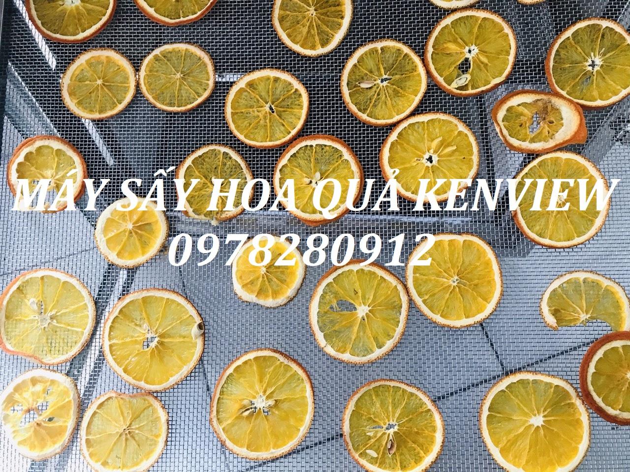 Kenview cung cấp máy sấy hoa quả mini tại quảng ninh .0978.280.912