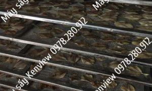 Kenview cung cấp máy sấy hải sản mini- sấy cá khô tại An Giang.0978.280.912