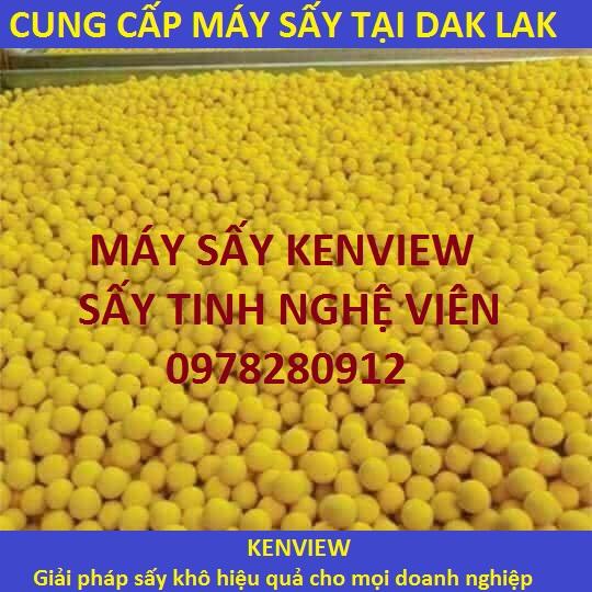 Cung cấp máy sấy tinh nghệ viên tại Dak Dak. 0978280912