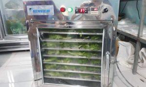 Sấy khô cá diêu hồng bằng máy sấy hải sản kenview
