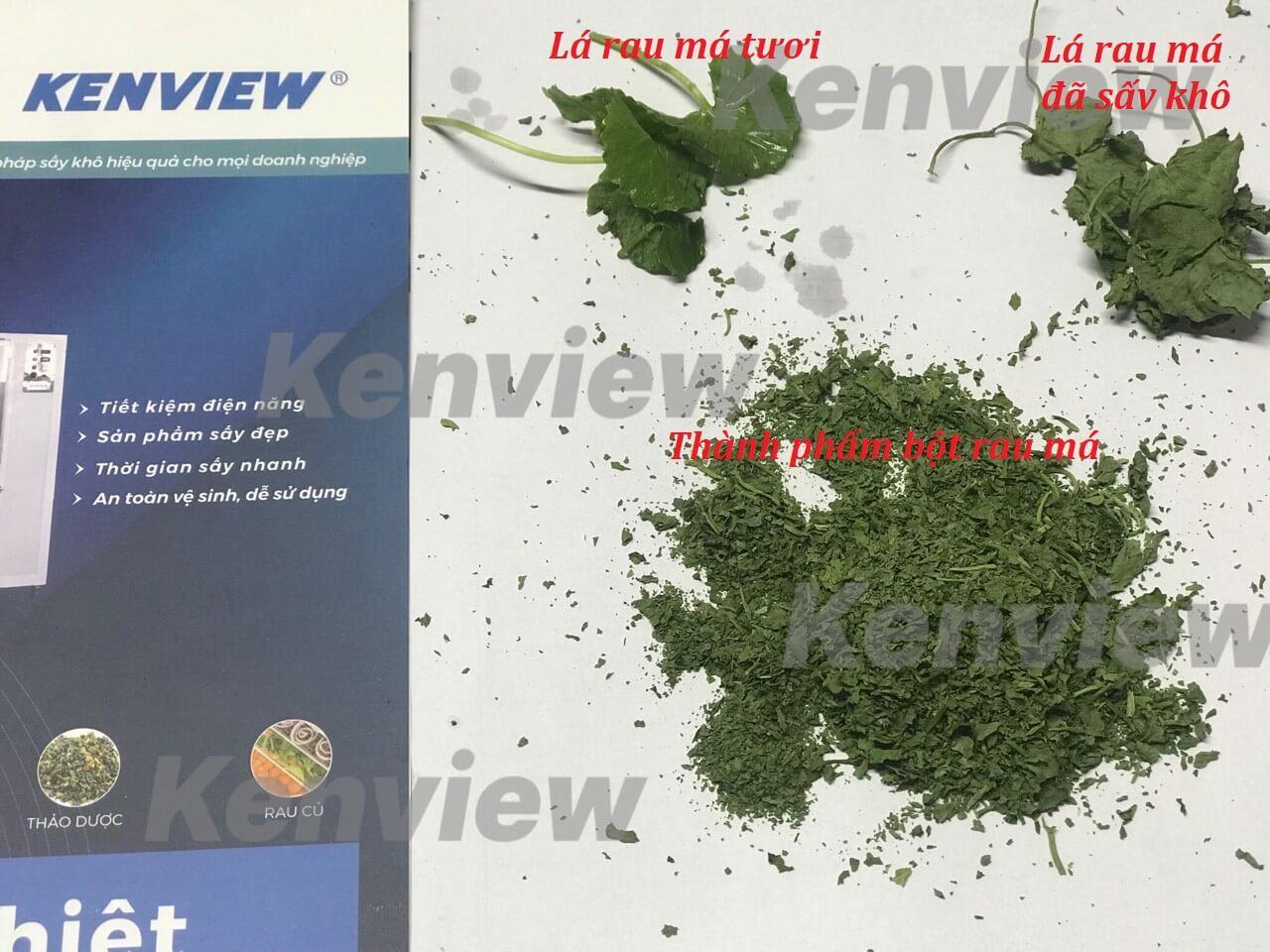 Máy sấy hoa quả Kenview, sấy rau má làm tinh bột giữ màu xanh